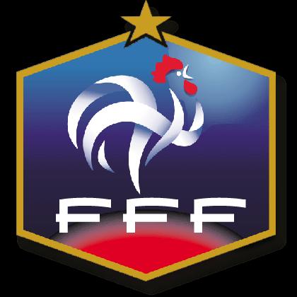 フランス代表エンブレム