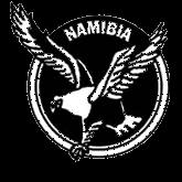 ナミビア代表エンブレム
